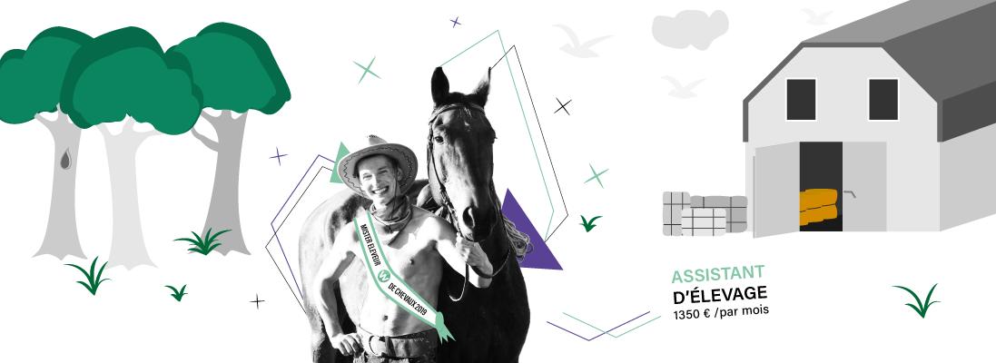 comment travailler dans le monde de equitation - eleveur - ecurie - ranch - haras - cheval - poney - ferme
